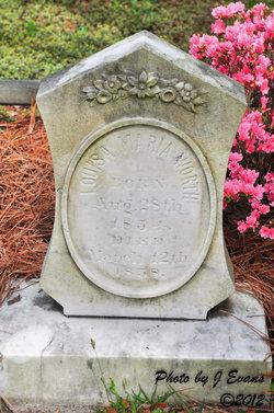 Louisa Maria Worth