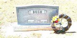 John Joseph Bush