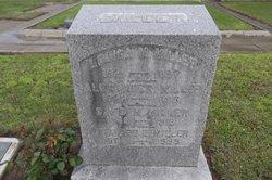 Louisa May <i>Williams</i> Miller