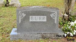 Annie Bacot <i>Cumming</i> Burr
