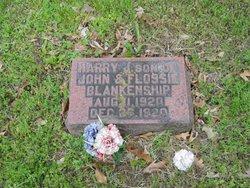 Harry James Blankenship