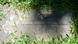 Fred J Anderson