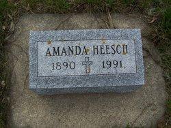 Amanda Heesch