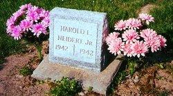 Harold L Neidert, Jr