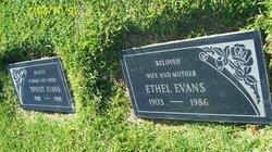 Ethel <i>Mann</i> Evans