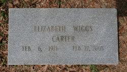 Elizabeth Lib <i>Wiggs</i> Carter