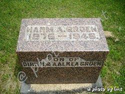 Harm Albert Groen