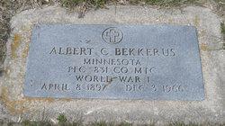 Albert C Bekkerus