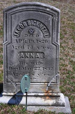 Anna Bicknell
