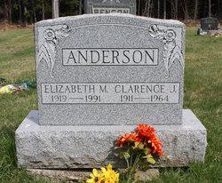 Elizabeth M. Anderson