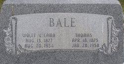 Violet Victoria <i>Lamb</i> Bale