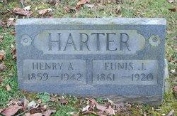 Henry Albert Harter