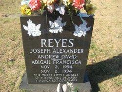 Andrew David Reyes