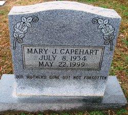 Mary J Capehart