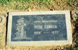 Rose <i>Sawaya</i> Sawaya