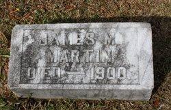 Dr James M. Martin