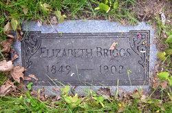 Elizabeth A Eliza <i>Shear</i> Briggs