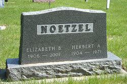 Elizabeth Bertha <i>Panzram</i> Noetzel