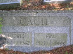 Ludwig Gach
