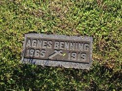 Agnes Benning
