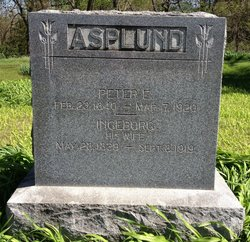 Peter E Asplund