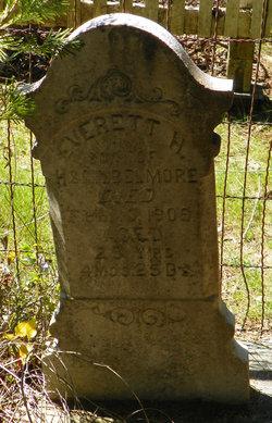 Everett H Belmore
