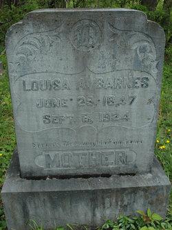 Louisa A. Barnes