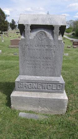 Mienert H. Gronewold