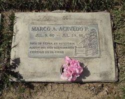 Marco A Acevedo F.