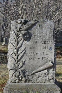 Rev John H Gannett