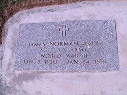 James Norman Aalbu