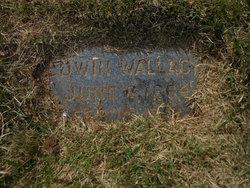 Edwin Wallace Chick