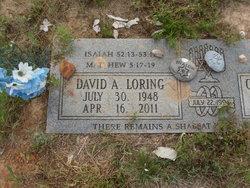 David Allen Loring