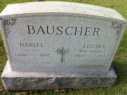Daniel A Bauscher