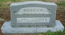 Lucy M. Anderson