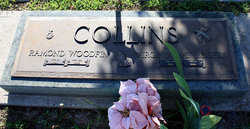 Virginia Ray <i>Rogers</i> Collins
