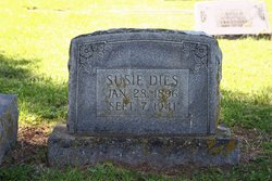 Mary Sue Susie <i>Eakes</i> Dies