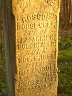 Roscoe Roosevelt Burchfield