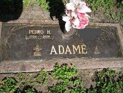 Pedro H. Adame