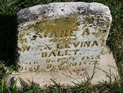 Anne A Bailey