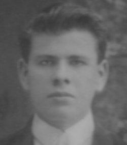 Afton Sterankovich