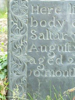 John Saltar