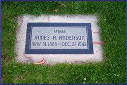 James A Anderson