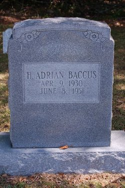 Adrian Hubert Baccus