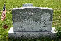 Helen Anna <i>Wayland</i> Burns