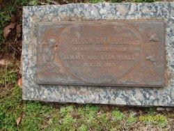 Allison Dawn Hall
