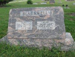 Charles Wesley Blackwell