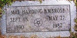 Mae <i>Harding</i> Ambrose
