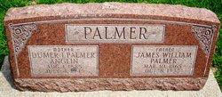 James William Palmer