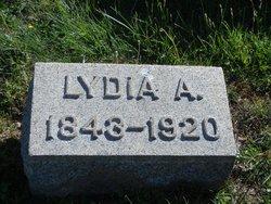 Lydia Ann <i>Blatchley</i> Lee
